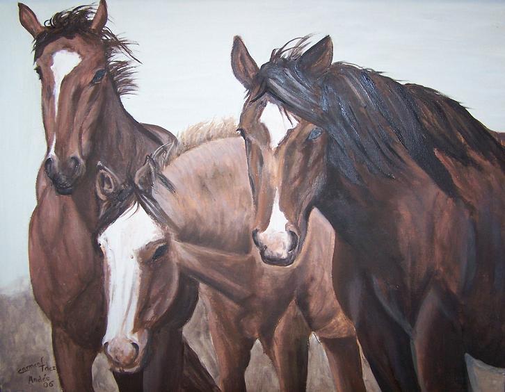 Imagenes y cuadros de caballos taringa - Fotos y cuadros ...